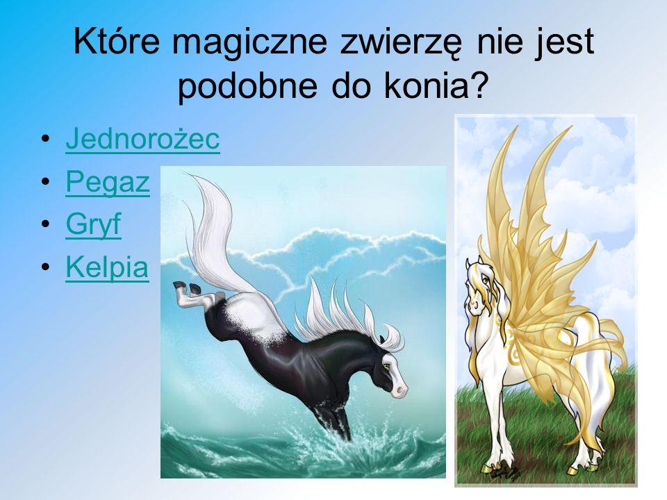 Które magiczne zwierzę nie jest podobne do konia