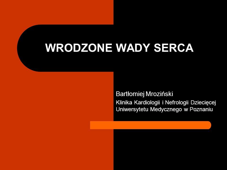 WRODZONE WADY SERCA Bartłomiej Mroziński