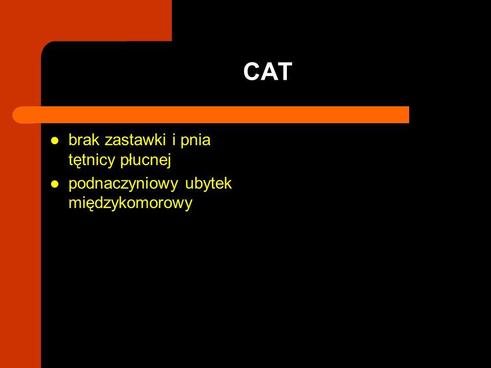 CAT brak zastawki i pnia tętnicy płucnej