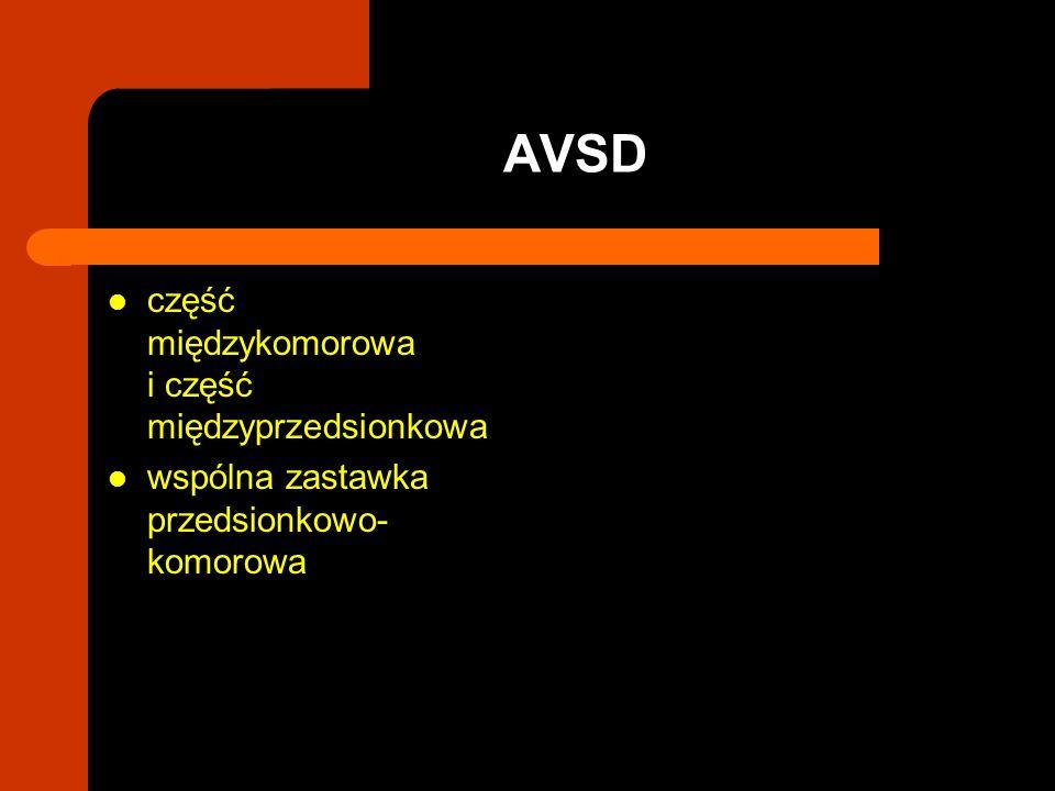 AVSD część międzykomorowa i część międzyprzedsionkowa