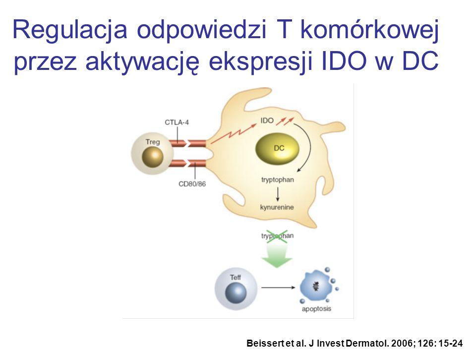 Regulacja odpowiedzi T komórkowej przez aktywację ekspresji IDO w DC