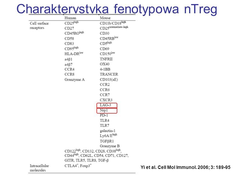 Charakterystyka fenotypowa nTreg