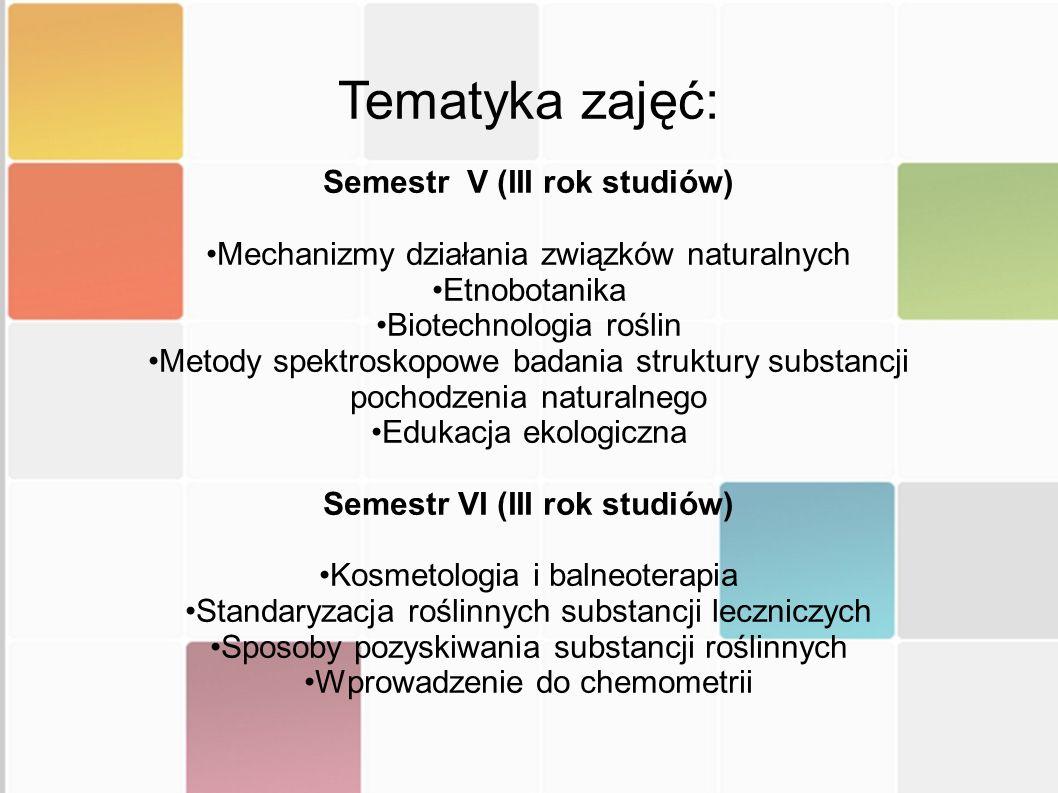 Semestr V (III rok studiów) Semestr VI (III rok studiów)