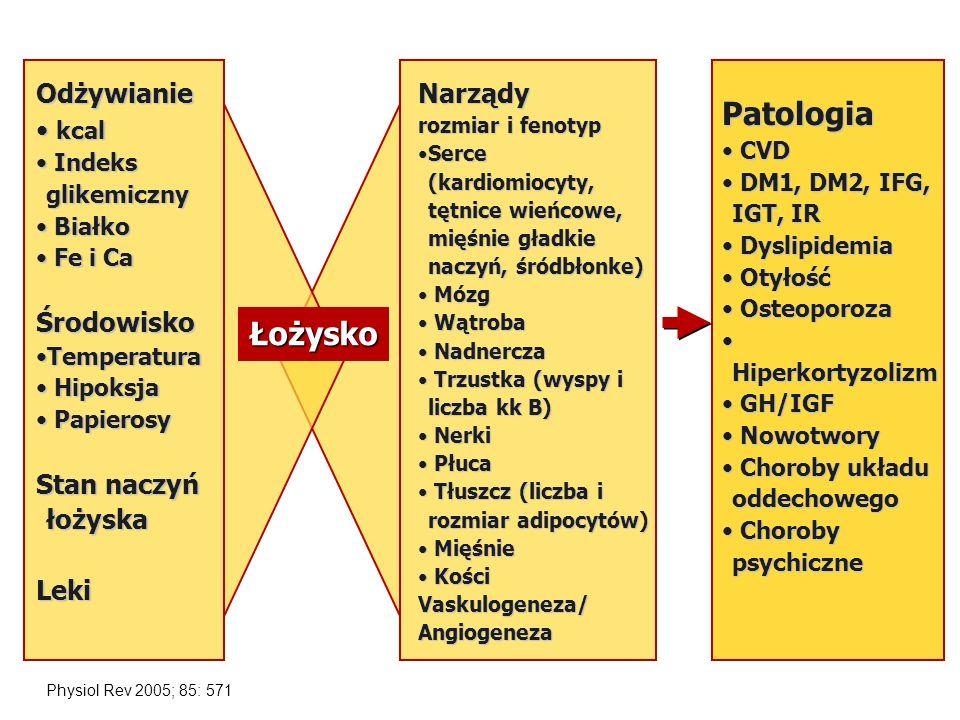 Patologia Łożysko Odżywianie kcal Środowisko Stan naczyń łożyska Leki