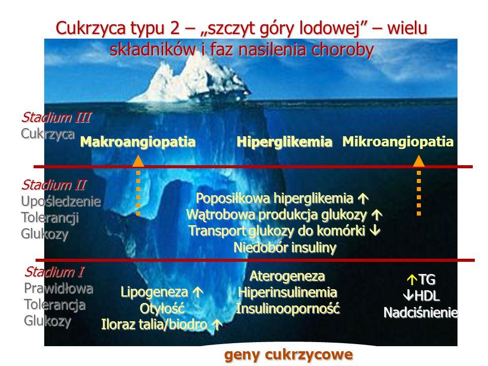 """Cukrzyca typu 2 – """"szczyt góry lodowej – wielu składników i faz nasilenia choroby"""