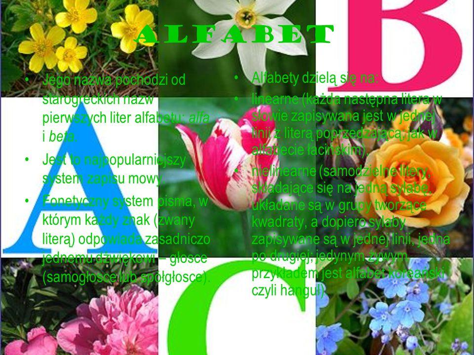 ALFABET Jego nazwa pochodzi od starogreckich nazw pierwszych liter alfabetu: alfa i beta. Jest to najpopularniejszy system zapisu mowy.