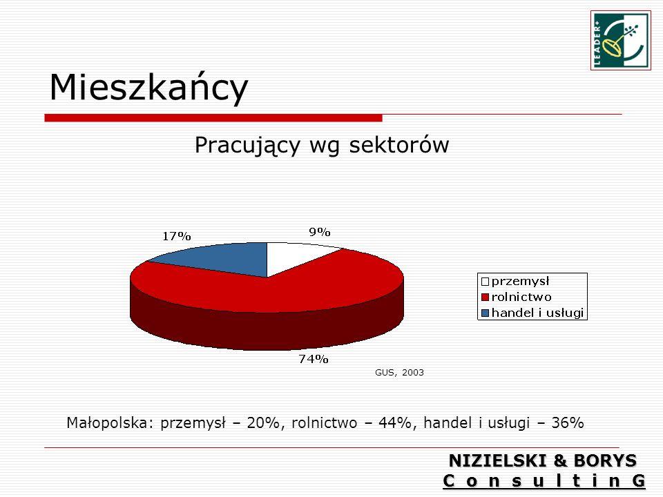 Mieszkańcy Pracujący wg sektorów NIZIELSKI & BORYS C o n s u l t i n G