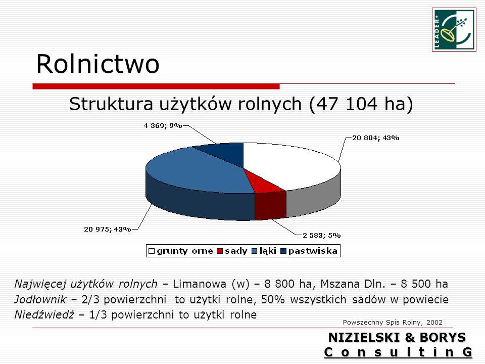 Struktura użytków rolnych (47 104 ha)