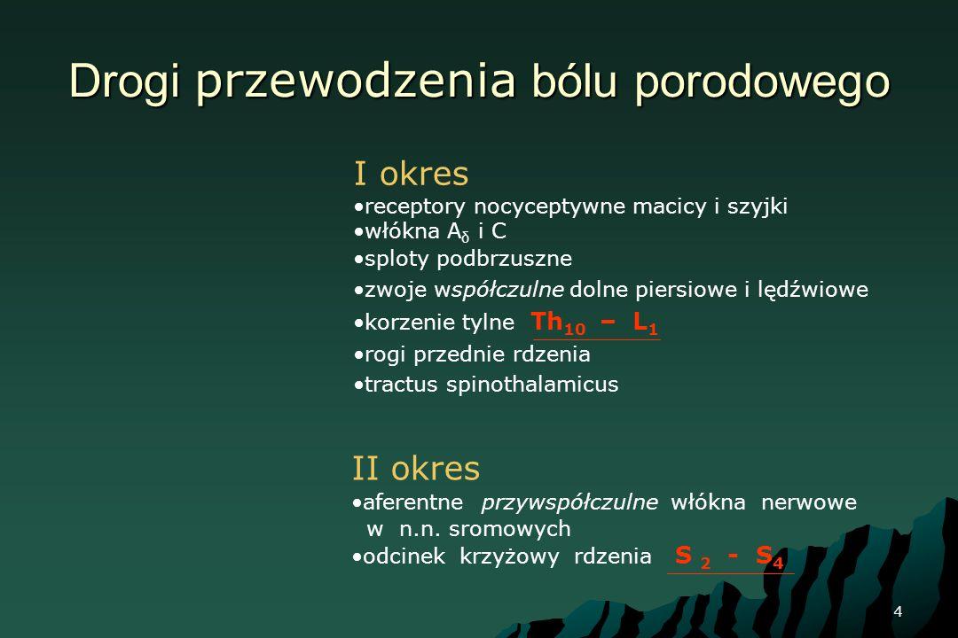 Drogi przewodzenia bólu porodowego