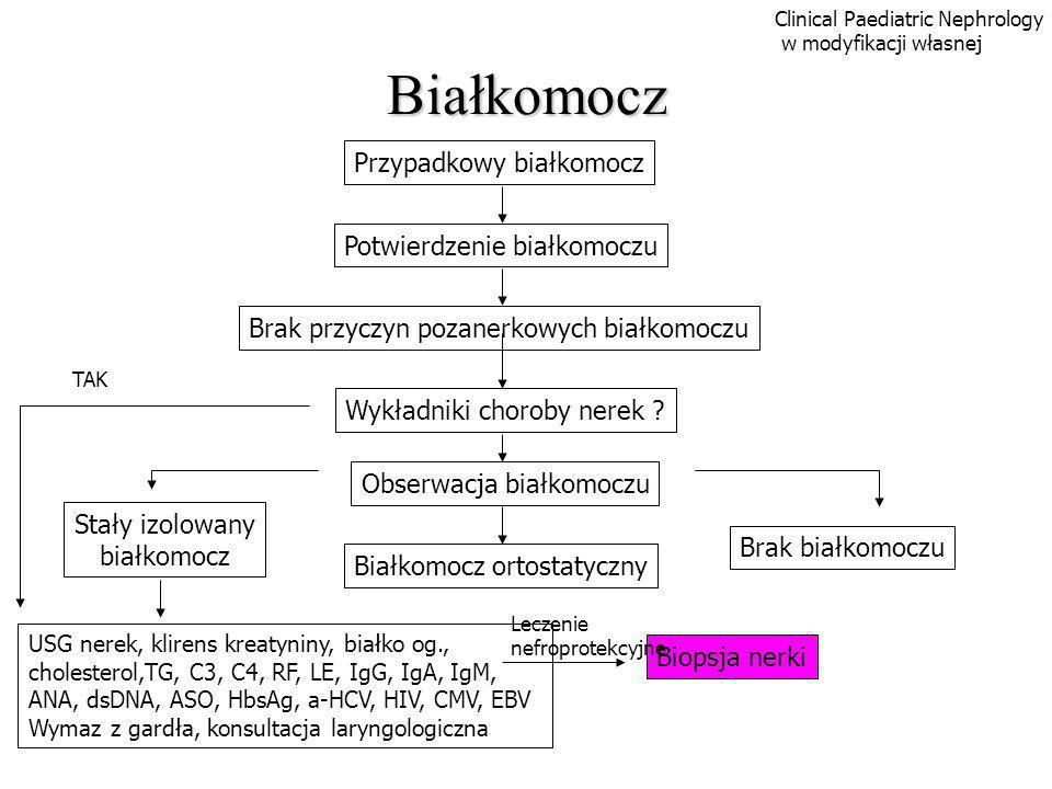 Białkomocz Przypadkowy białkomocz Potwierdzenie białkomoczu