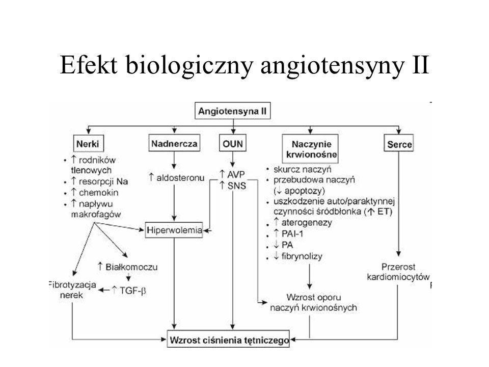 Efekt biologiczny angiotensyny II