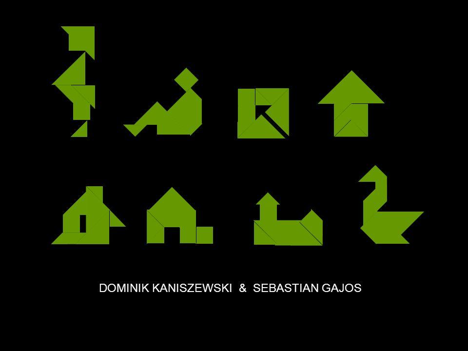 DOMINIK KANISZEWSKI & SEBASTIAN GAJOS