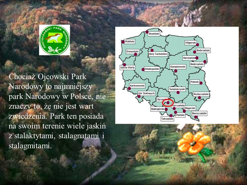 Chociaż Ojcowski Park Narodowy to najmniejszy park Narodowy w Polsce, nie znaczy to, że nie jest wart zwiedzenia.