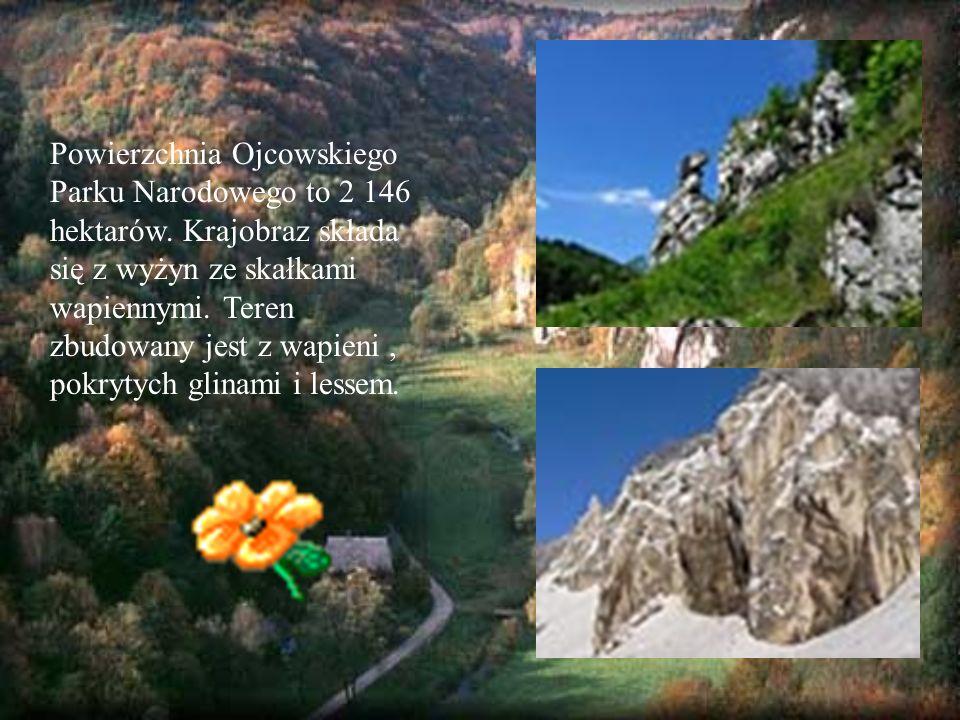 Powierzchnia Ojcowskiego Parku Narodowego to 2 146 hektarów