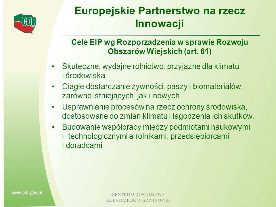 Europejskie Partnerstwo na rzecz Innowacji