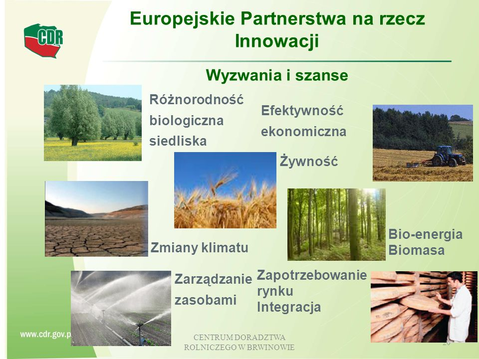 Europejskie Partnerstwa na rzecz Innowacji
