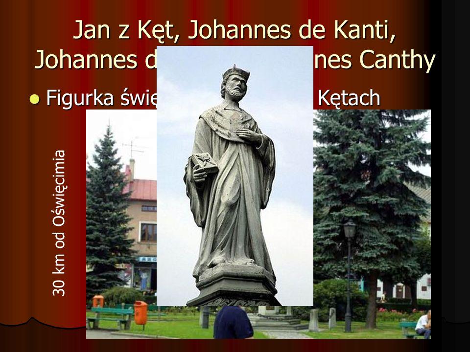 Jan z Kęt, Johannes de Kanti, Johannes de Kanty i Joannes Canthy