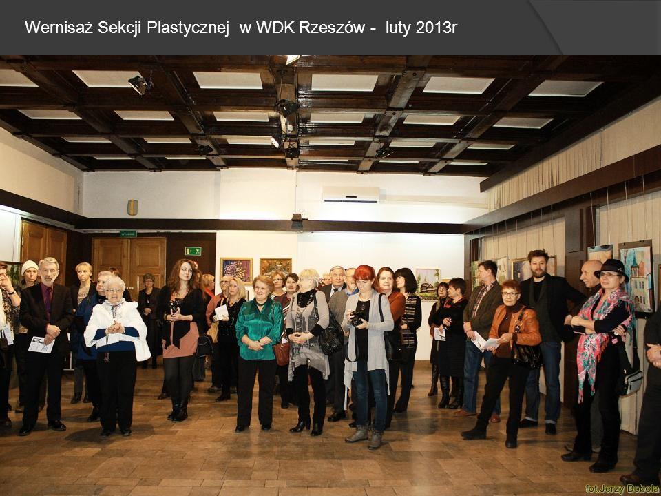 Wernisaż Sekcji Plastycznej w WDK Rzeszów - luty 2013r