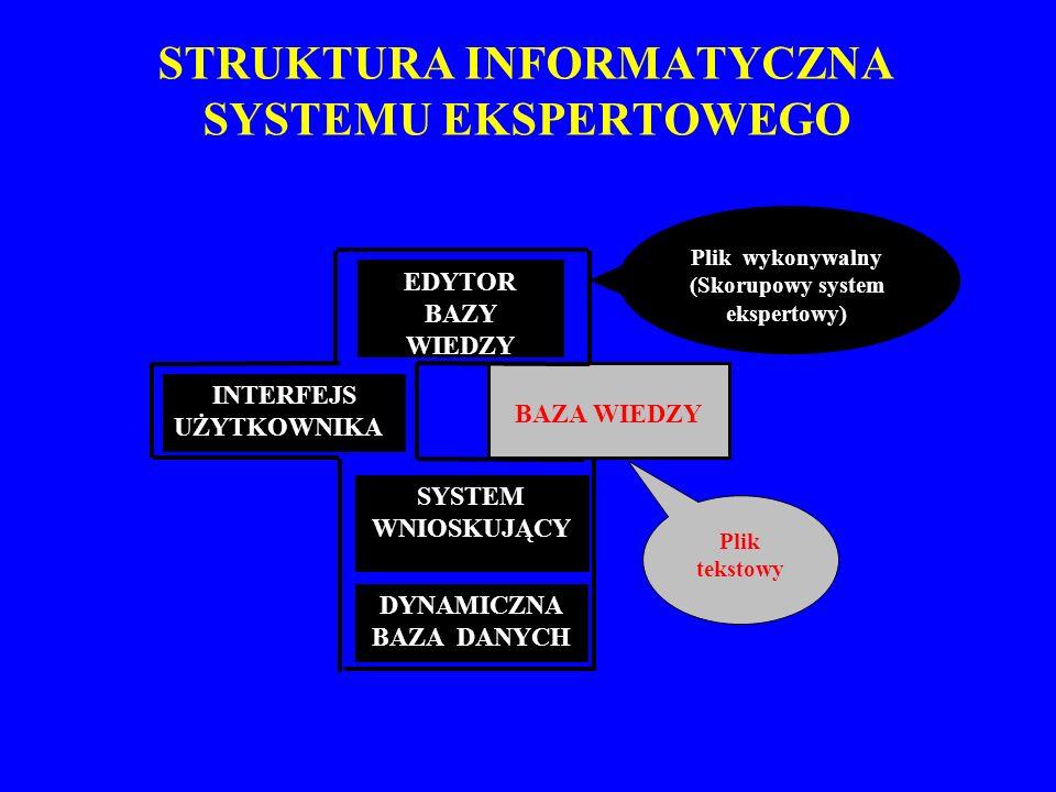 STRUKTURA INFORMATYCZNA SYSTEMU EKSPERTOWEGO