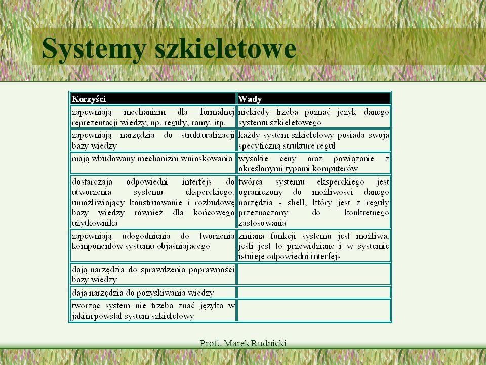 Systemy szkieletowe Prof.. Marek Rudnicki