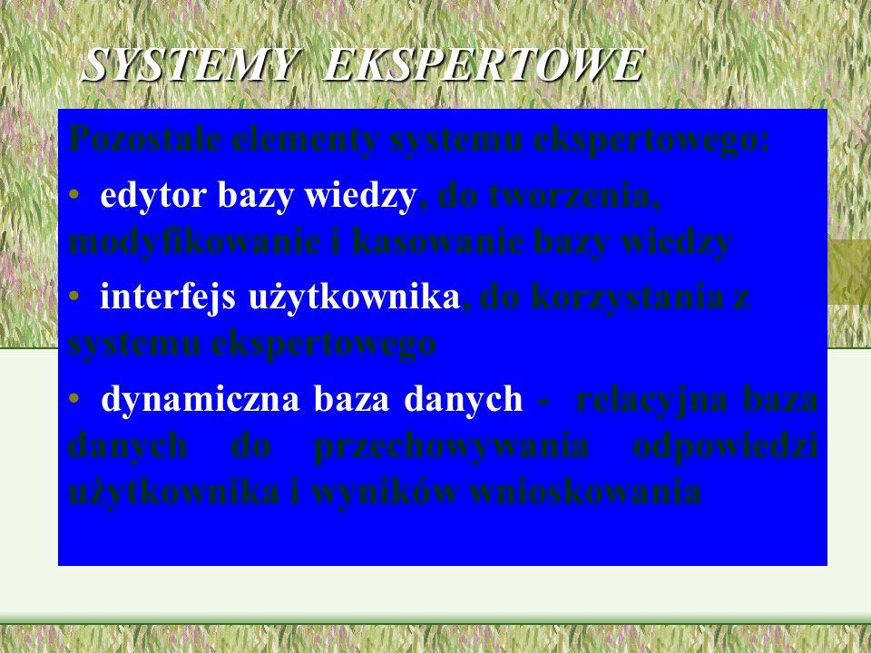 SYSTEMY EKSPERTOWE Pozostałe elementy systemu ekspertowego: