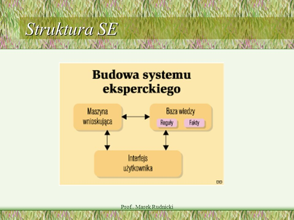 Struktura SE Prof.. Marek Rudnicki
