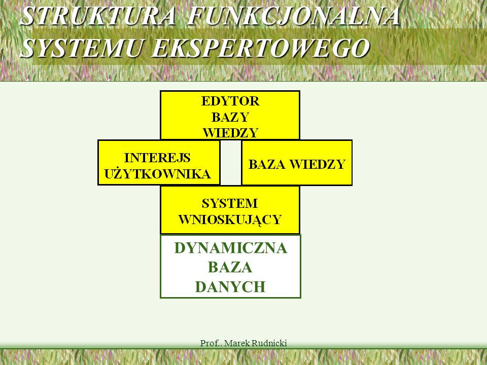 STRUKTURA FUNKCJONALNA SYSTEMU EKSPERTOWEGO