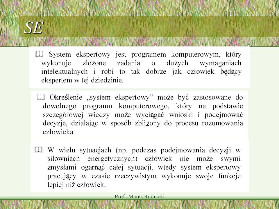 SE Prof.. Marek Rudnicki