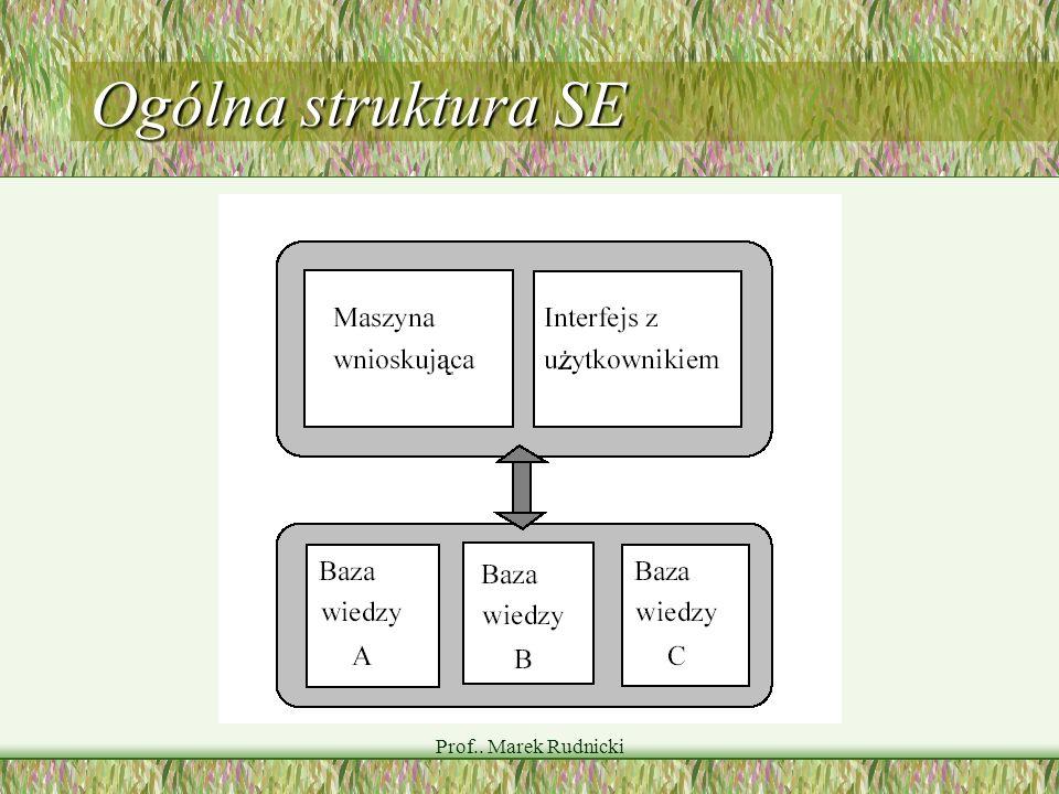 Ogólna struktura SE Prof.. Marek Rudnicki