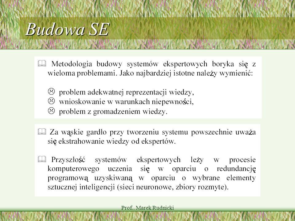 Budowa SE Prof.. Marek Rudnicki