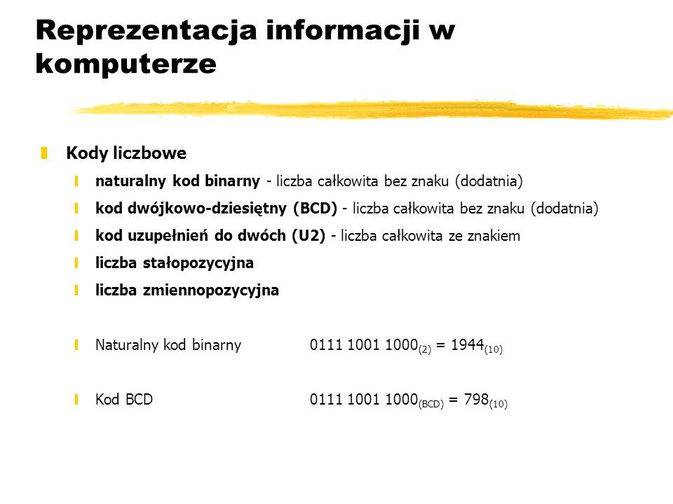 Reprezentacja informacji w komputerze