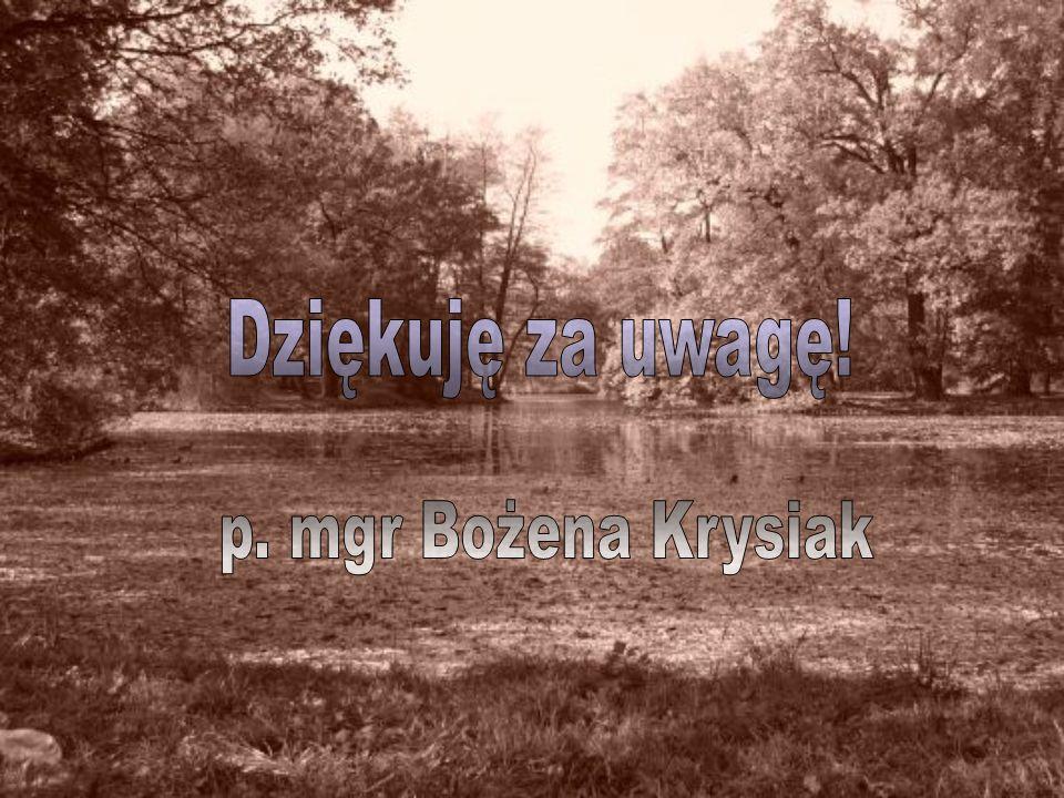 Dziękuję za uwagę! p. mgr Bożena Krysiak