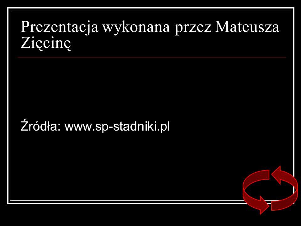 Prezentacja wykonana przez Mateusza Zięcinę