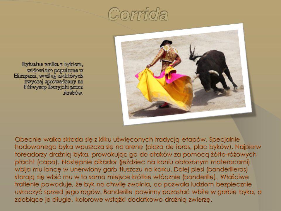 Corrida Rytualna walka z bykiem, widowisko popularne w Hiszpanii, według niektórych zwyczaj sprowadzony na Półwysep Iberyjski przez Arabów.