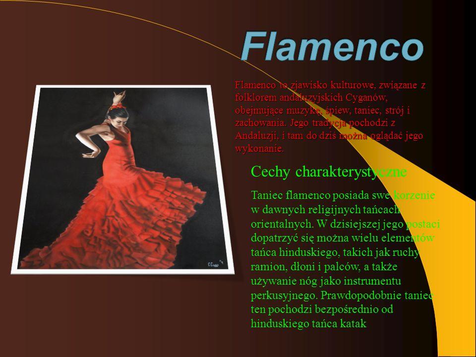 Flamenco Cechy charakterystyczne