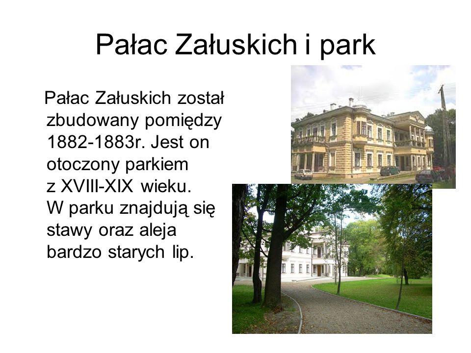 Pałac Załuskich i park