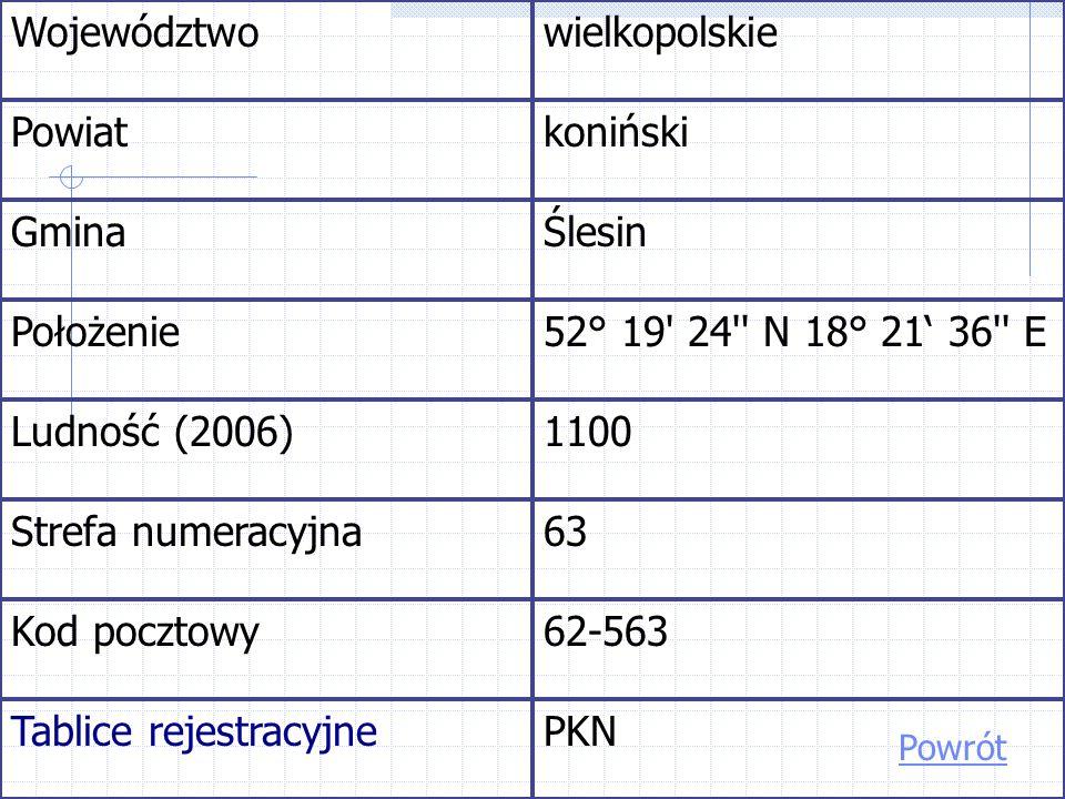 Tablice rejestracyjne PKN