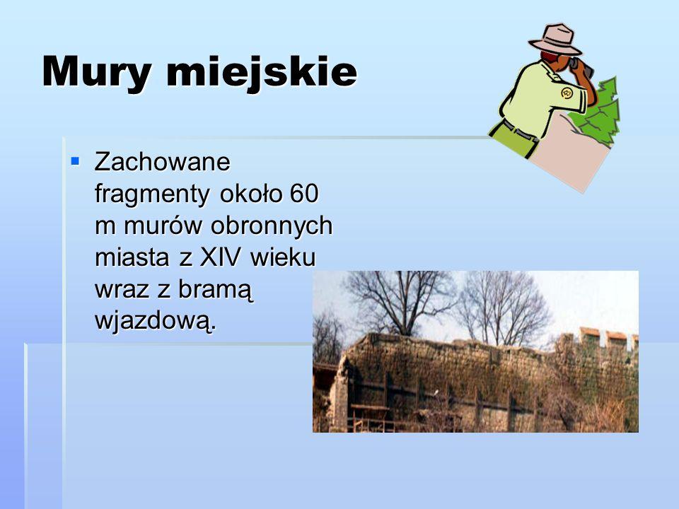 Mury miejskieZachowane fragmenty około 60 m murów obronnych miasta z XIV wieku wraz z bramą wjazdową.