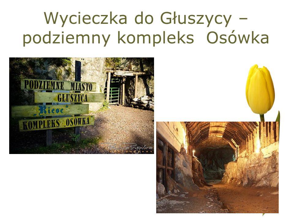 Wycieczka do Głuszycy – podziemny kompleks Osówka