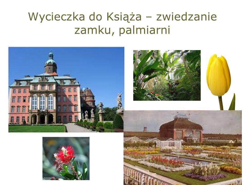 Wycieczka do Książa – zwiedzanie zamku, palmiarni