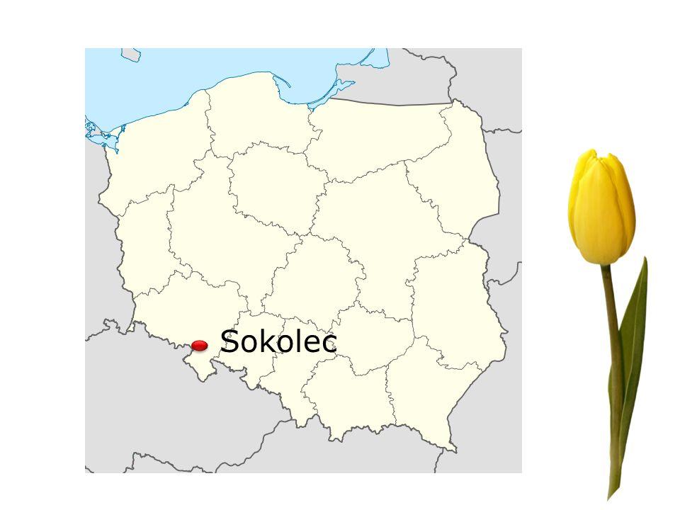 Sokolec