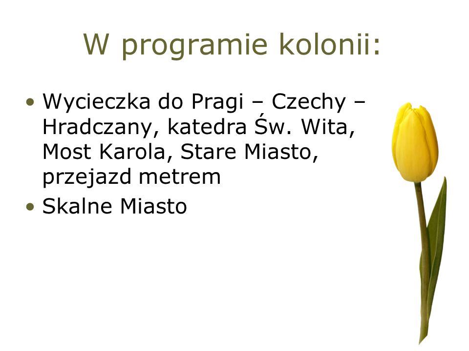 W programie kolonii: Wycieczka do Pragi – Czechy – Hradczany, katedra Św. Wita, Most Karola, Stare Miasto, przejazd metrem.