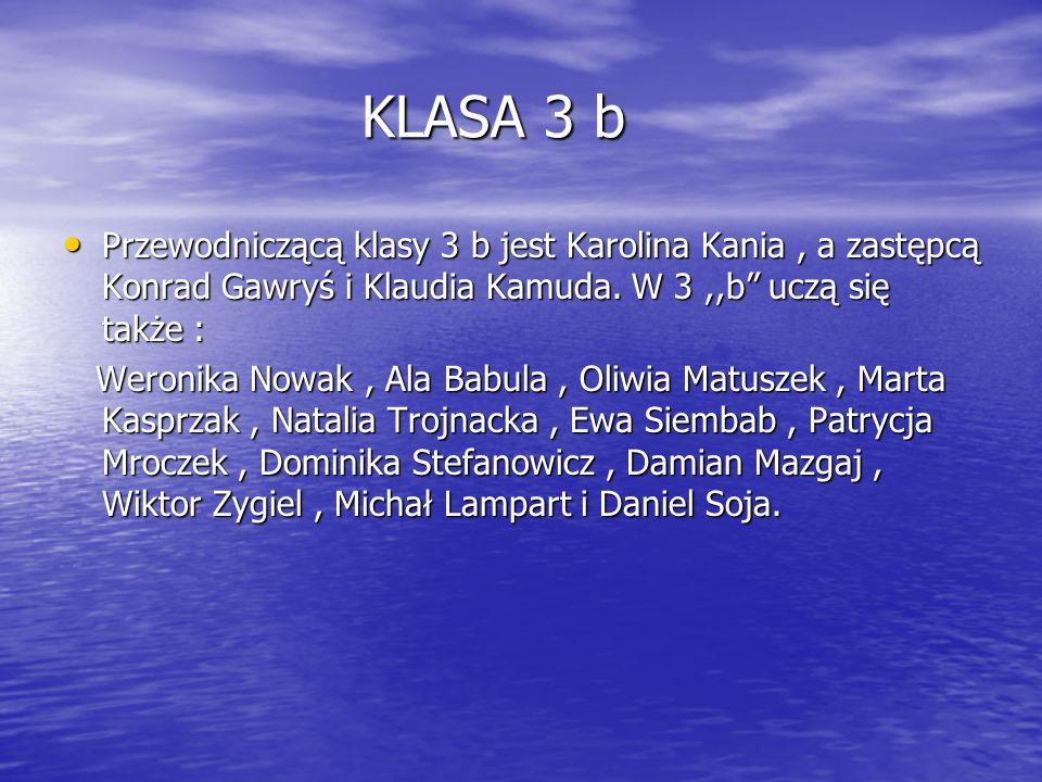 KLASA 3 bPrzewodniczącą klasy 3 b jest Karolina Kania , a zastępcą Konrad Gawryś i Klaudia Kamuda. W 3 ,,b uczą się także :