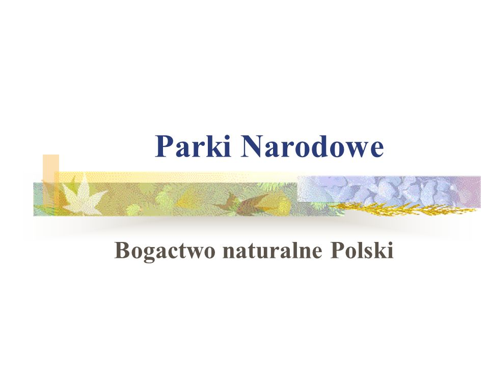 Bogactwo naturalne Polski