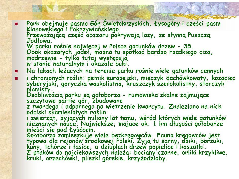 Park obejmuje pasmo Gór Świętokrzyskich, Łysogóry i części pasm Klonowskiego i Pokrzywiańskiego. Przeważającą część obszaru pokrywają lasy, ze słynną Puszczą Jodłową. W parku rośnie najwięcej w Polsce gatunków drzew - 35. Obok okazałych jodeł, można tu spotkać bardzo rzadkiego cisa, modrzewie - tylko tutaj występują w stanie naturalnym i okazałe buki.