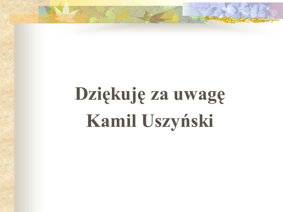 Dziękuję za uwagę Kamil Uszyński
