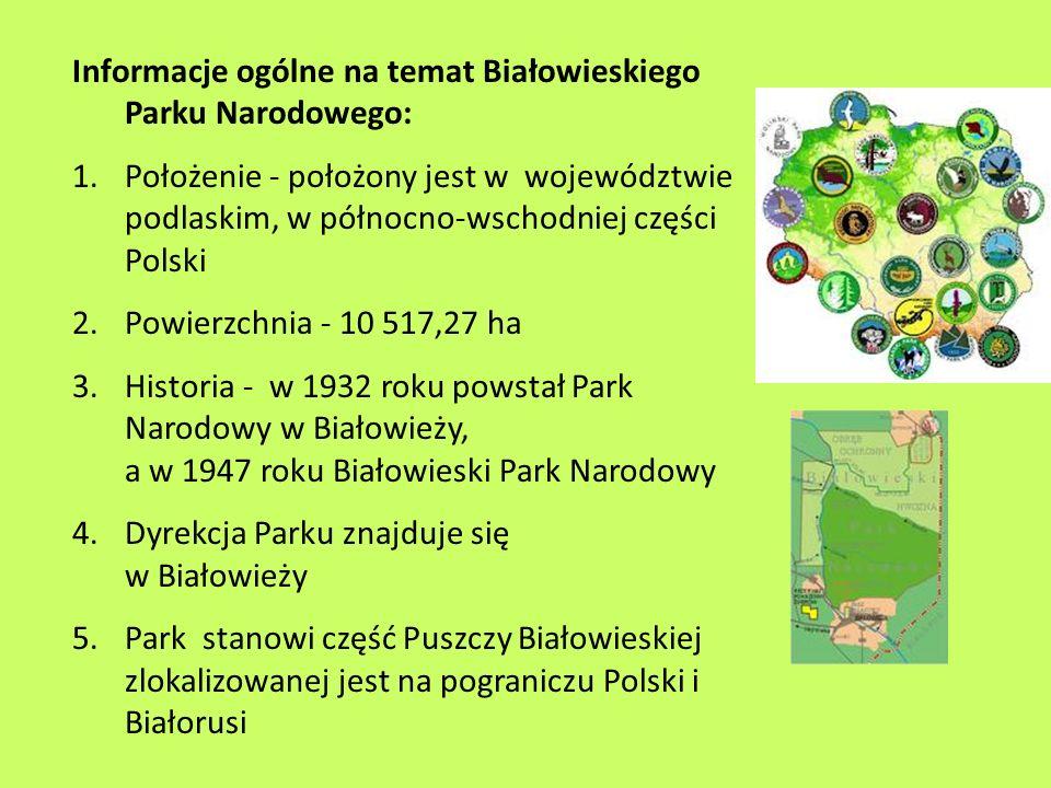 Informacje ogólne na temat Białowieskiego Parku Narodowego: