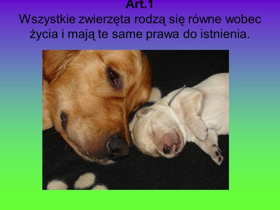 Art.1 Wszystkie zwierzęta rodzą się równe wobec życia i mają te same prawa do istnienia.