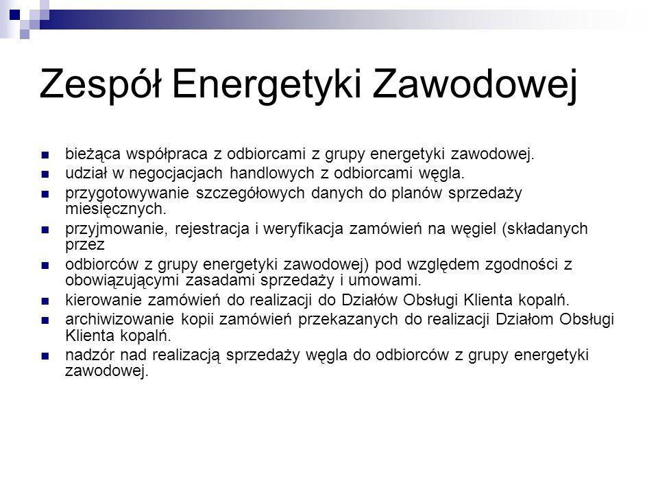Zespół Energetyki Zawodowej