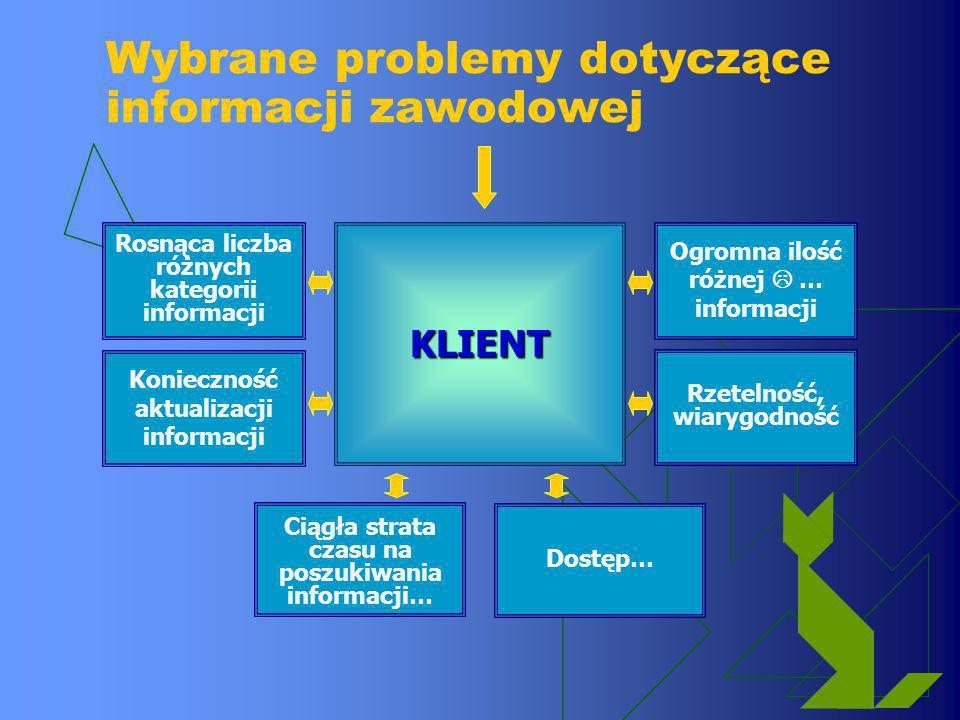 Wybrane problemy dotyczące informacji zawodowej
